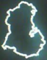 Artidax